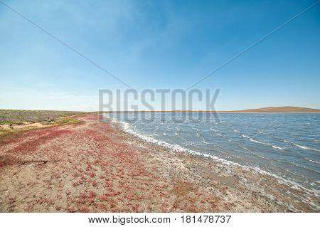 Unique pink salt lake in Crimea, Russia