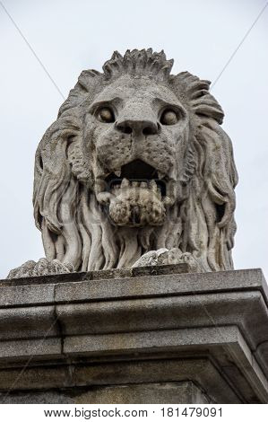 This is one of the four lion statues which greet people as they travel across Chain Bridge in the centre of Budapest.