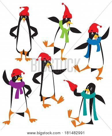 Set of funny penguins in beanie or cap with pompom or bobble, in scarves. Children vector illustration