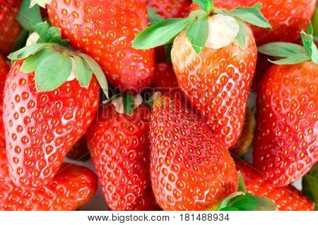 A selection of fresh red mouthwatering strawberries