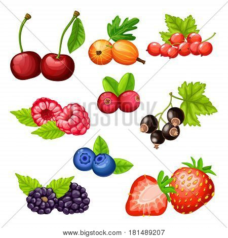 Colorful cartoon berries icons collection with cherry gooseberry strawberry cowberry cranberry bilberry blackberry currant raspberry isolated vector illustration