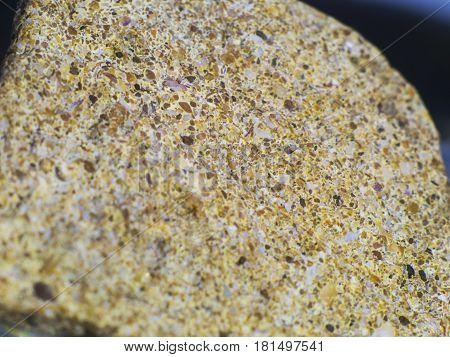 The stone from hardened seashells macro shot