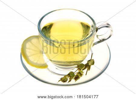 Herbal tea, sage leaves and lemon slice isolated on white background