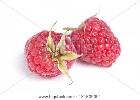 Few raspberries isolated on white background