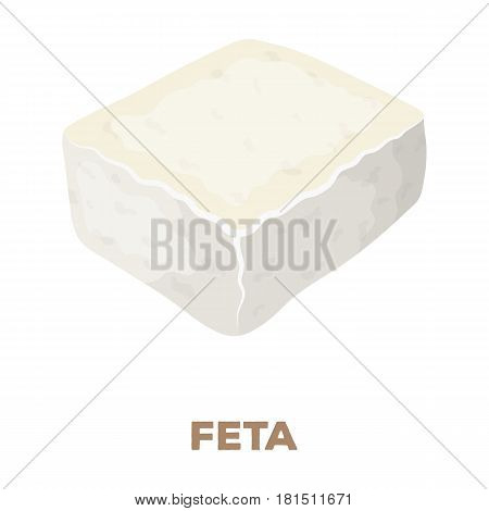 Cheese feta.Different kinds of cheese single icon in cartoon style vector symbol stock illustration .