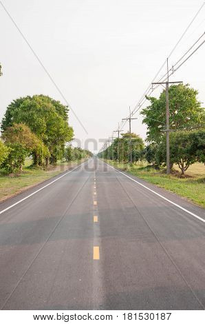 Straight road. The road is straight and trees on either side. Background.