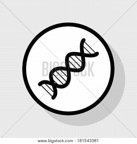 The DNA sign. Vector. Flat black icon in white circle with shadow at gray background.