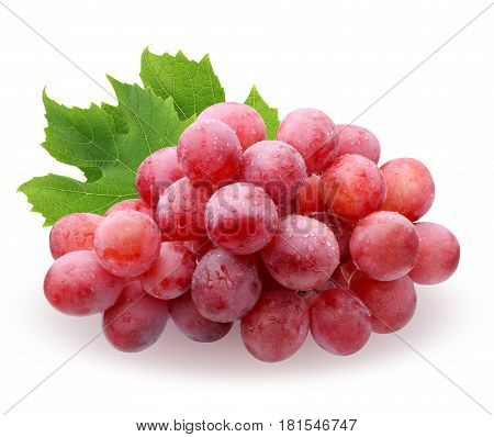 a brush of red grapes with water drops with leaves isolated on white background. fruit berries food.