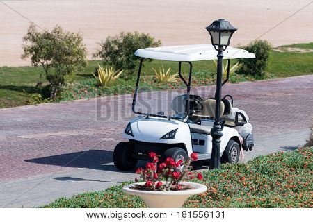 White golf cart or club car small electric vehicle for carrying golfers to game course ground parked on road at street lamp on sunny summer day on natural background. sport and transportation
