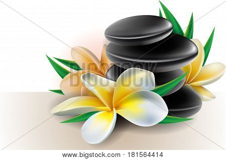 Spa concept zen stones and frangipani flowers