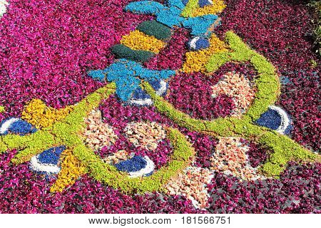 GENZANO ITALY - JUNE 17: Floral Carpet in the Main Street on June 17 2012 in Genzano Italy. This event takes place every year and almost 350.000 flower petals were used this year