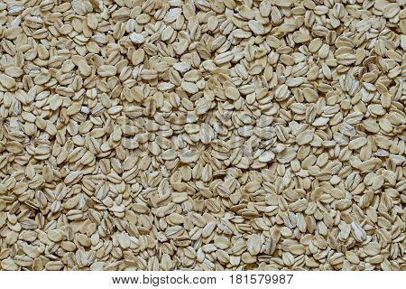 pile of smashed oat seed, close up