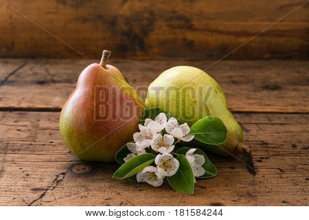 Red pear flowering pear on vintage dark wood background.