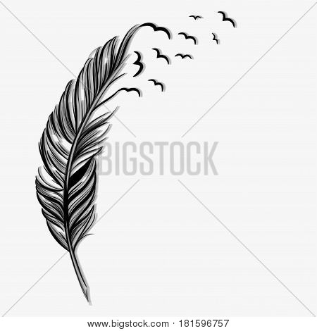 Feather for writing with flying birds on a gray background