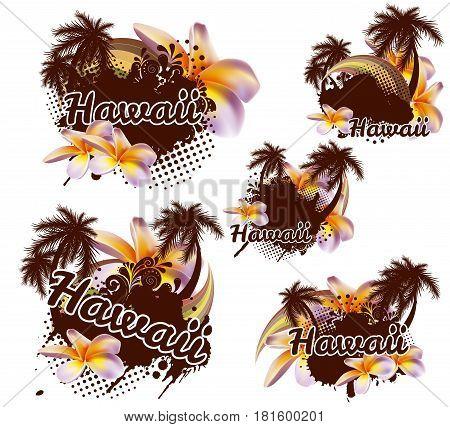 Tropical design element. Hawaii. Vector palms plumeria.