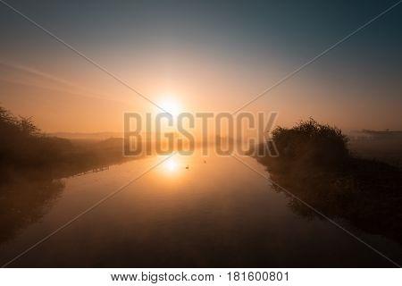 Two Swans Drifting Along A Misty River Nene At Sunrise
