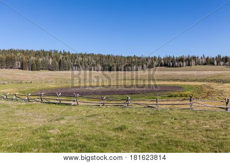 a scenic landscape on the Kaibab plateau in northern Arizona