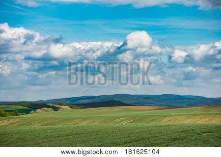 Summer landscape, majestic grass covered meadow.
