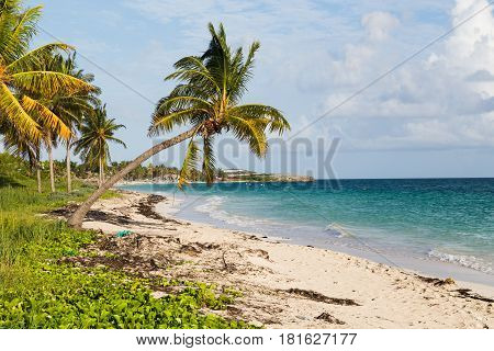 One of the beautiful stretches of beach along the coast of Cayo Coco Cuba.
