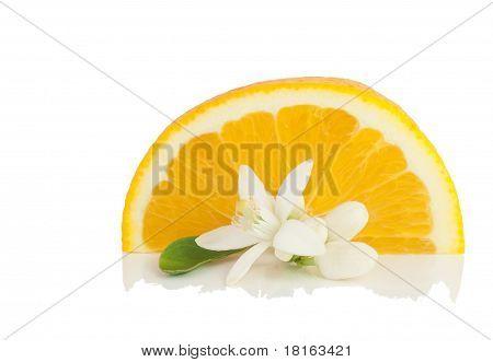Orange, Flower And Slice.
