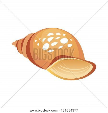 Brown sea spiral seashell, an empty shell of a sea mollusk. Colorful cartoon illustration isolated on a white background