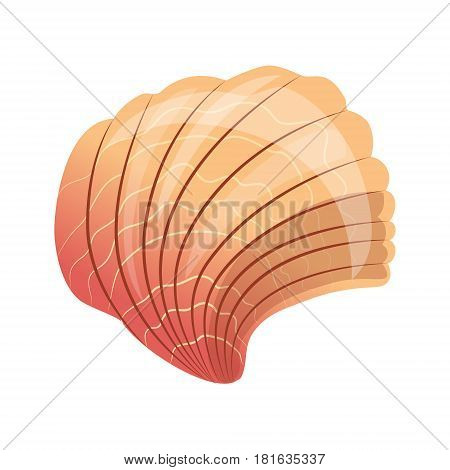 Scallop seashell, an empty shell of a sea mollusk. Colorful cartoon illustration isolated on a white background