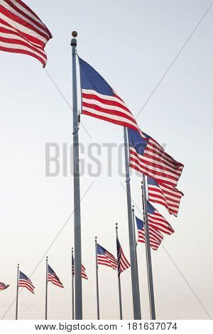 American flags arranged in a circle at the base of the Washington Monument in Washington DC