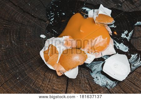 Broken egg on old stump in forest. Natural healthy food concept.