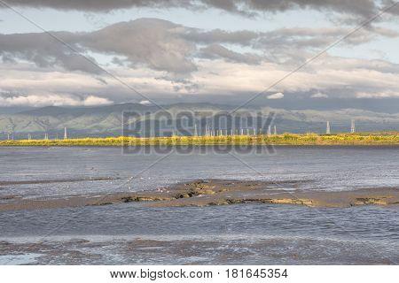 Low Tide in San Francisco Bay. Shoreline Park, Santa Clara County, California, USA.
