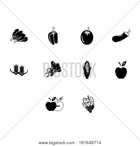 a collection of simple flat agriculture icon vector
