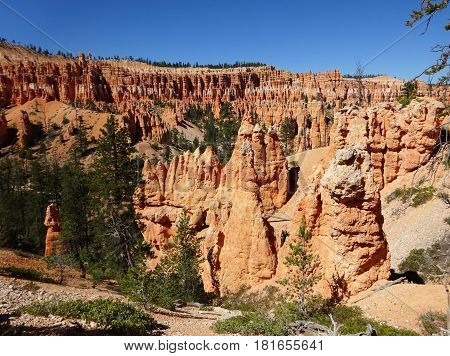 Fantastic stone formations near blue sky created by nature. Zion National Park. Geologic amphitheater landscape.