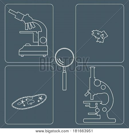 Stylized Icons Of Microscopes, Magnifier, Amoeba, Ciliate-slipper. Laboratory Equipment Symbol.