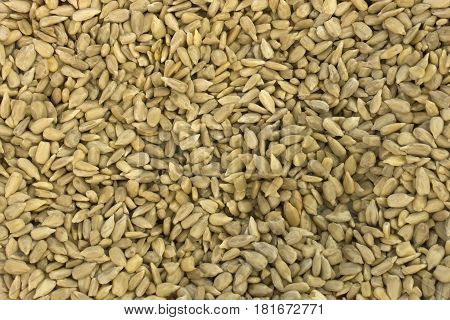This is a photograph of hulled Sunflower Seeds