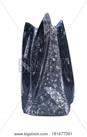 Huge orthoceras fossil sculpture in black marble isolated on white background