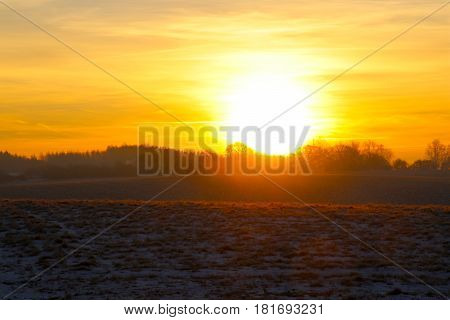 The sunrise lit the field up in reddish in February