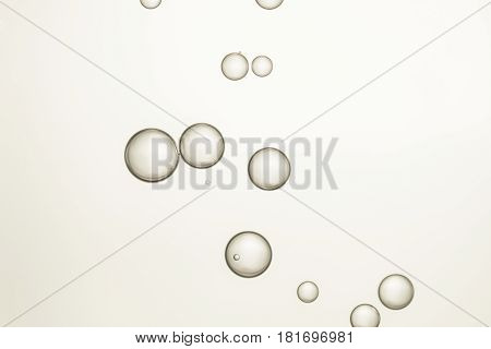 Beautiful wine bubbles isolated over a light background