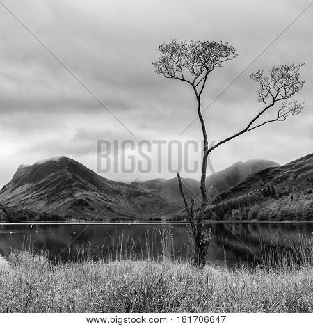 Stuning Autumn Fall Landscape Image Of Lake Buttermere In Lake District England