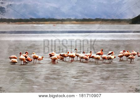 Colorful painting of Lesser Flamingo, Phoenicopterus minor, Lake Natron, Tanzania