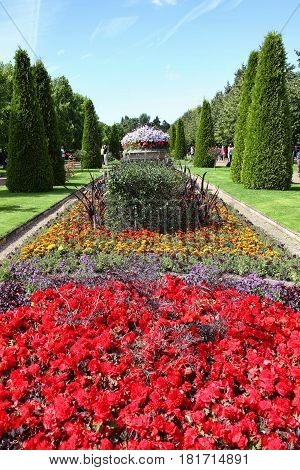 London, UK, July 24, 2011 :  Old fashioned formal herbaceous flower beds in Regent's Park during mid summer