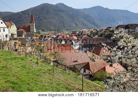 Village of Weissenkirchen in der Wachau on the river Danube. Wachau-valley district of Krems-Land Lower Austria.