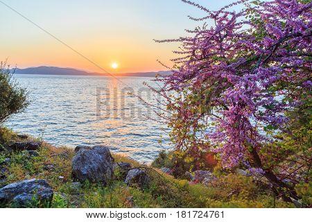 Spring time with sunset near hisaronu area in Marmaris Turkey