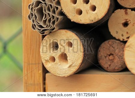 detail of insect hotel with a spider hiding in the hole