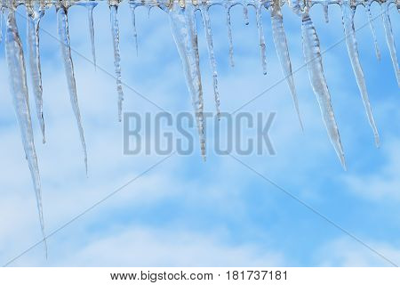 Icicles.Background of blue sky in the spring.