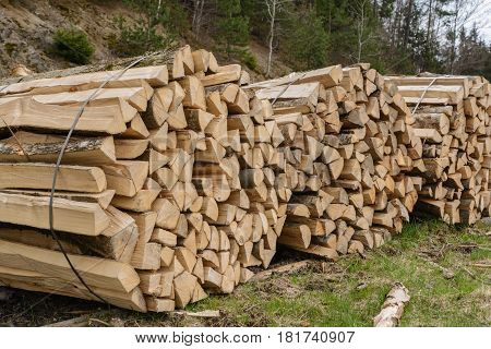 Split hardwood as piece goods bundled into firewood