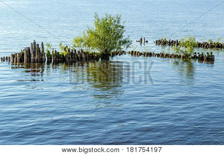The wreck destroyed the old wooden pier covered with grass and trees