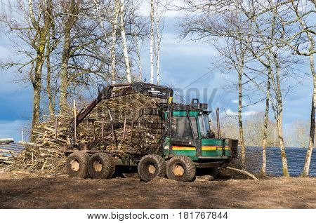 The Wood Loader After Hard Working Day