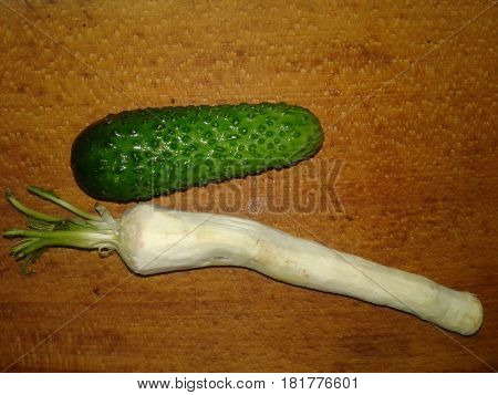 Cucumber Cucumber is the subject of agricultural greenhouse cucumbers herb widely used in cooking Horseradish Root