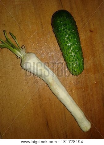 Cucumber is the subject of agricultural greenhouse cucumbers herb widely used in cooking Horseradish Root
