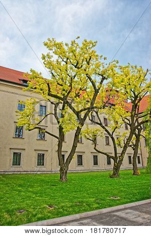 Krakow Poland - May 1 2014: Inner courtyard of Wawel Castle in Krakow in Poland