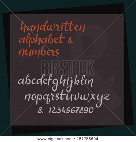 Handwritten Calligraphy Alphabet. Hand Lettering Vector Abc. Brush Style Letters